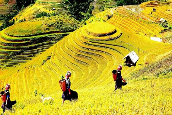 6-Days Hanoi – Sapa – Ha Long Authentic Package Tour