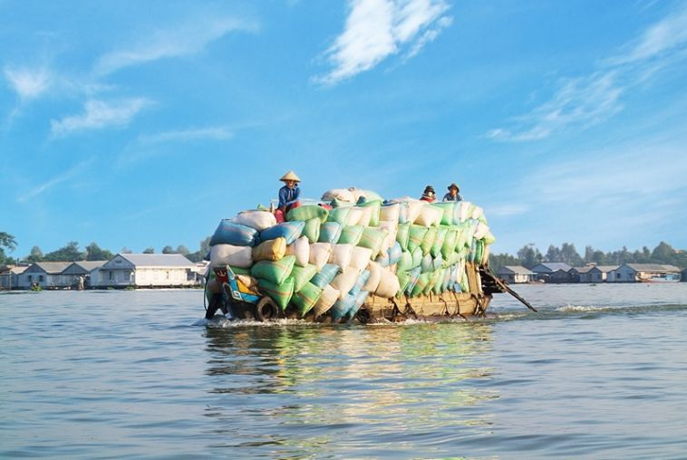 Boat-carries-rice-800x535