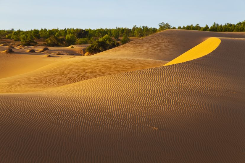 Experience The Amazing Red Sand Dune