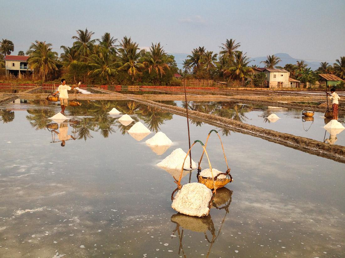salt field - Kampot - Cambodia