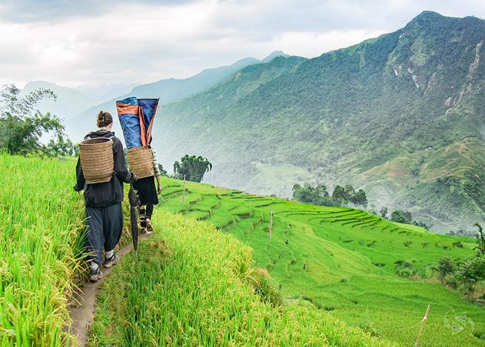 Sapa trekking one day tour, Vietnam